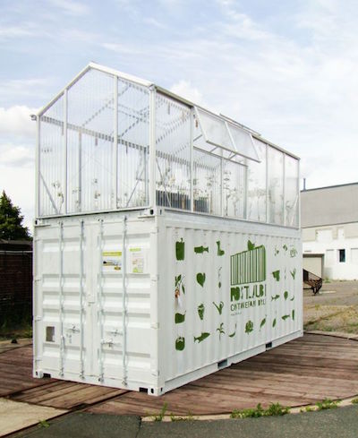 ShippingContainerGreenhouse